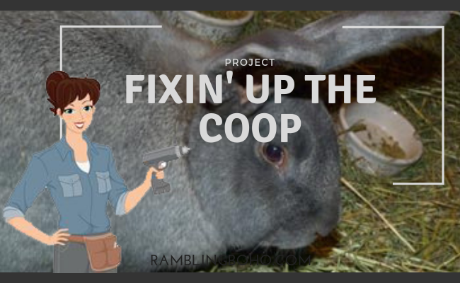 Fixin' up the coop
