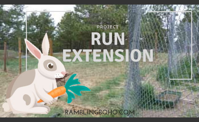 Project – Run extension